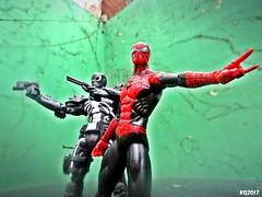 Superior Spider-Man & Agent Venom