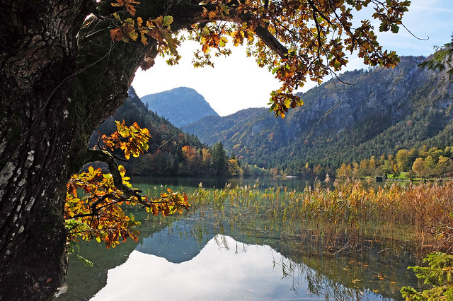 Colorful autumn at the Thumsee