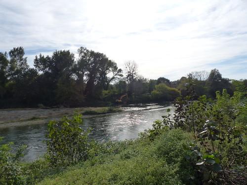 Labatut, Landes: le Gave de Pau