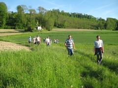 Marche-Broche 2012