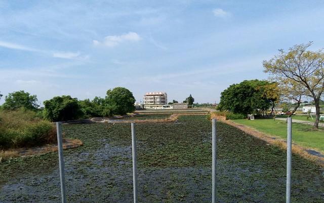 葫蘆埤自然公園 (2)