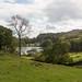 Loughrigg Tarn  11