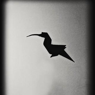 Black hummingbird shadow