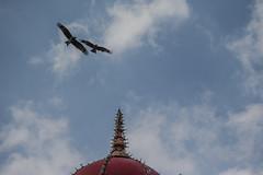 India-Mysore-GK-72153_20150106_GK.jpg