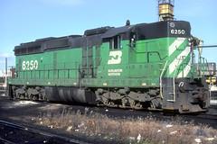 BN SD24 6250