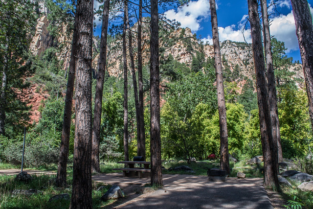 Camping: Pine Flat Campground