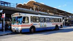 WMATA Metrobus 2000 Orion V #2101