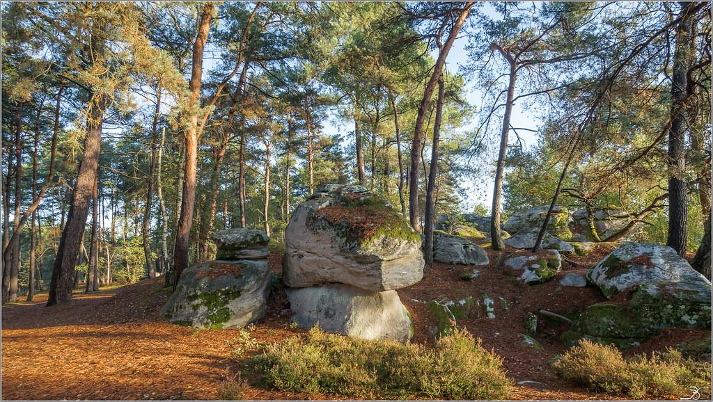 Les rochers de Nemours 36805041324_1534f8058a_b