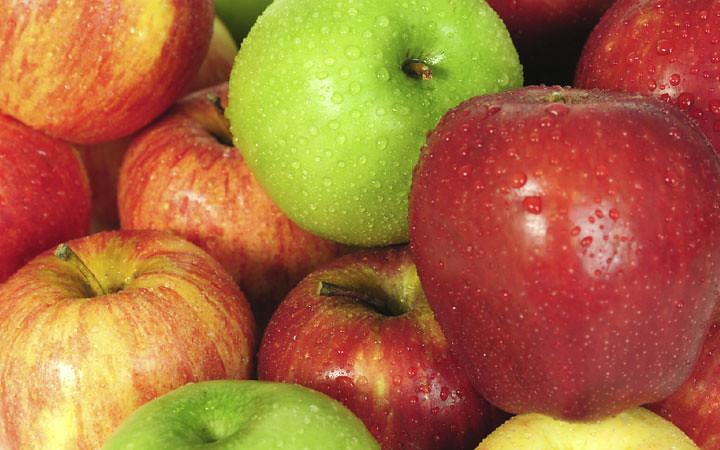 Prodotti fitosanitari e tutela della salute