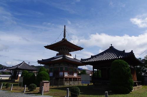 泉生山 酒見寺 多宝塔 / 国の重要文化財