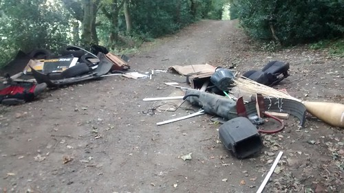 Fly tipping Sandy Lonnen Oct 17 (5)