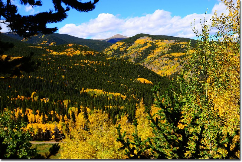 Fall colors, Mount Evans Scenic Byway, Colorado (44)