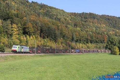 Grünholz , Sulz am Neckar. 26.09.17