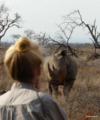 Walking with White Rhino, Mkhaya (19)