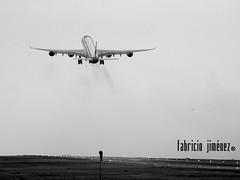 Iberia A346 - EC-LEV