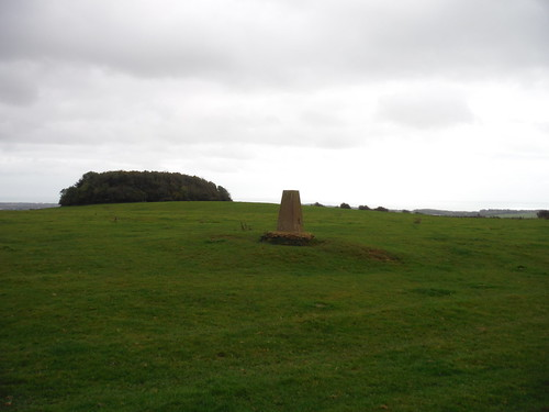 Trigpoint on Tolsford Hill and Brockman's Bushes