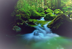 A mountain stream in the early autumn 8