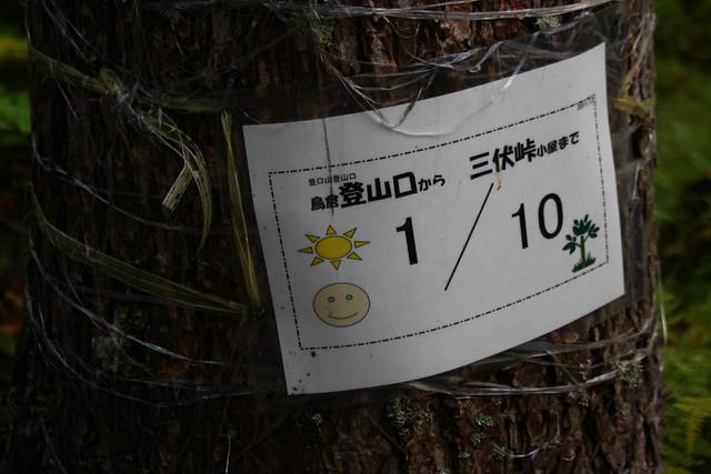 20170924-塩見岳(kuma)_0010.jpg