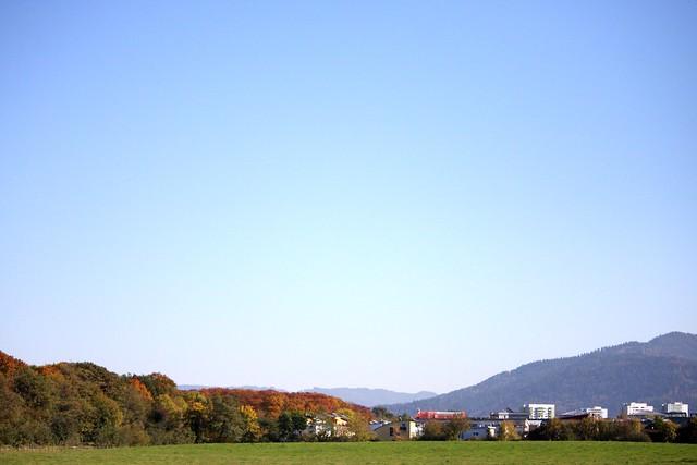 Colous of autumn III