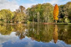 Autumn in Dortmund