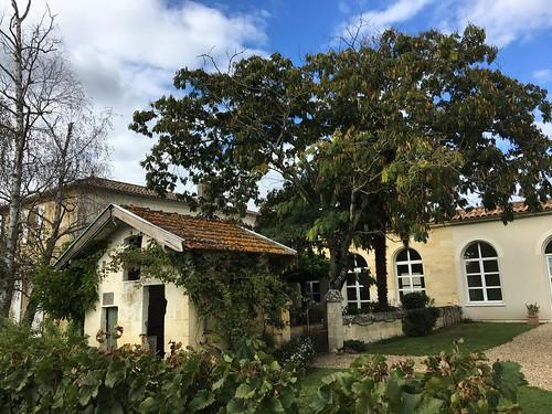 Château Belles Graves à Néas
