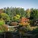 Botanic Gardens Edinburgh Oct 2017 -102