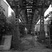 Underneath the Douglas L Line in Pilsen - Chicago - 15 Oct 2017 - 5DS - 030-FLKR222