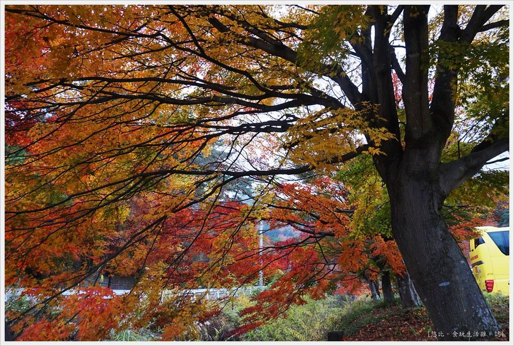 紅葉迴廊-久保田一竹美術館-4