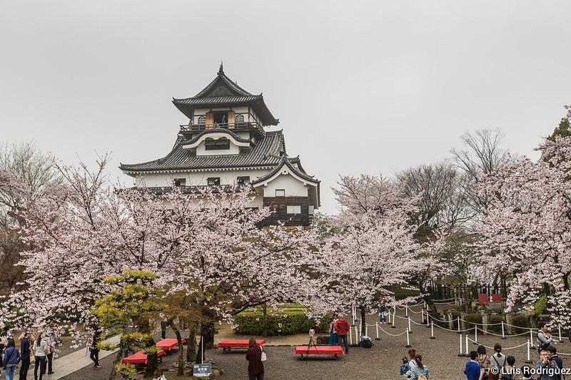 Inuyama-castillo-125