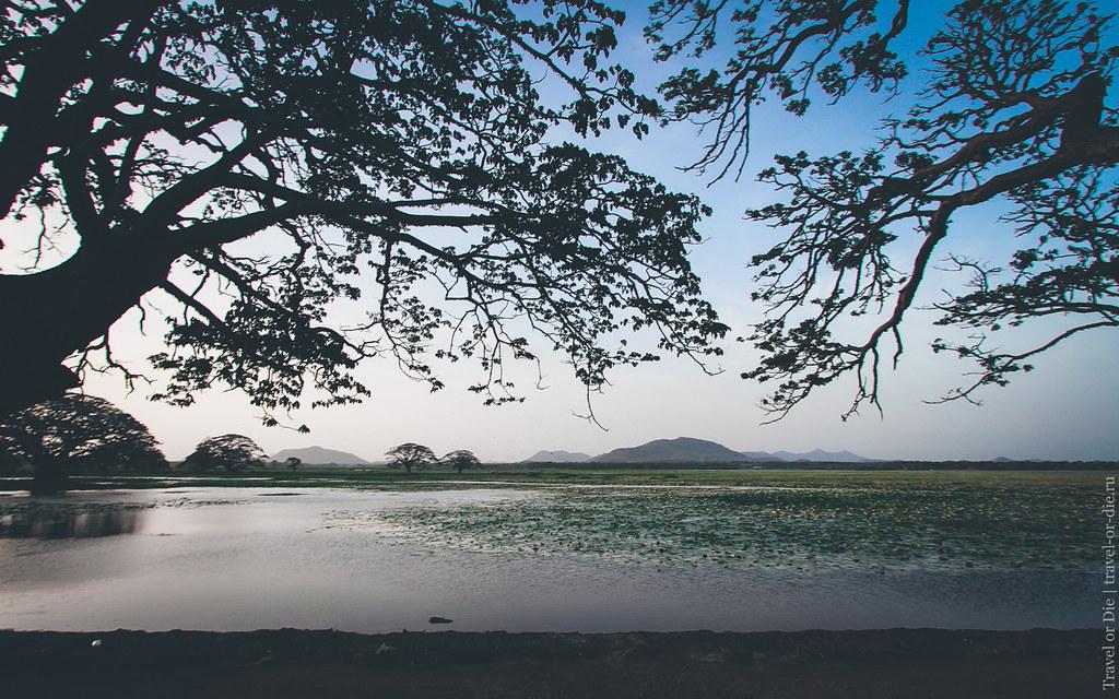 24.06-Tissamaharama-Sri-Lanka-canon-1500px-034