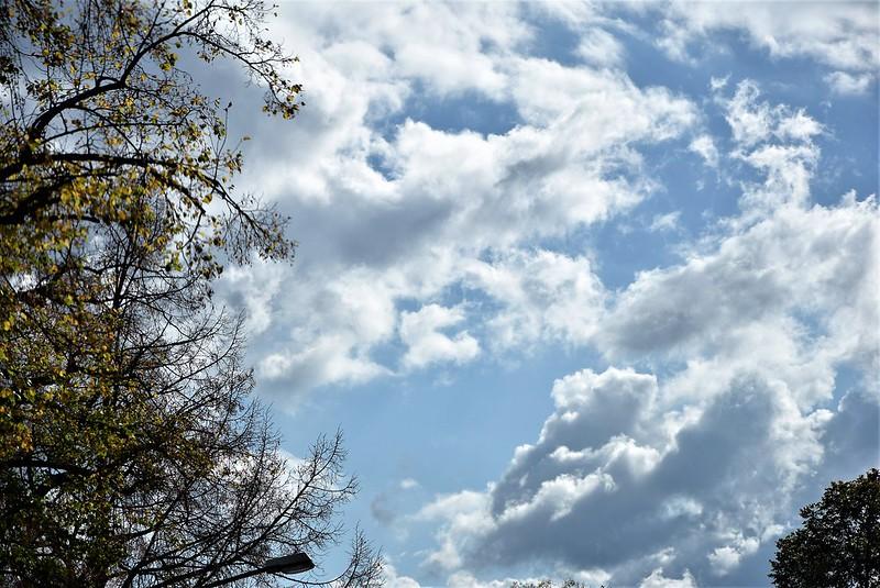 Clouds 06.10 (7)
