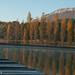 rêverie d'automne by E-B.photos
