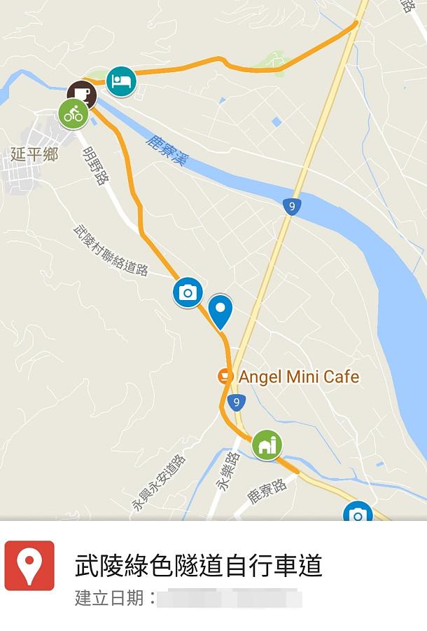 台東景點鹿野武陵綠色隧道B07