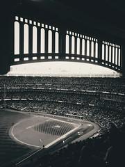 2017 ALCS Game 5 -- Houston Astros at New York Yankees, Yankee Stadium