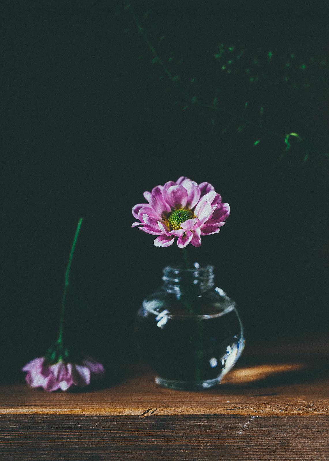 blomma - karinevelina.se