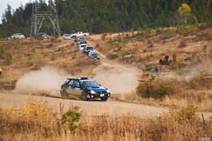 CRC Pacific Forest Rally 2017