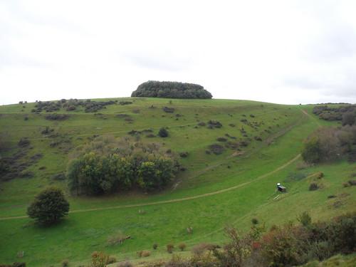 Brockman's Bushes across valley