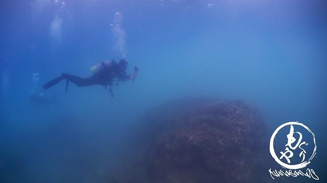 浅場は雲海にそびえる竹田城のような景色w うねりで水底付近は透明度0状態でした。。