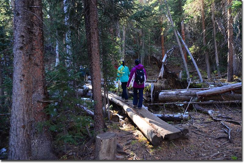 Crossing log bridge at South Willow Creek 1