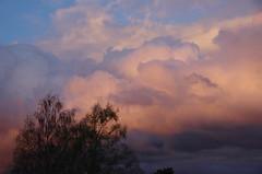 Ngongotaha Sunset