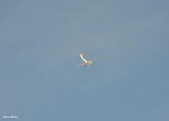 Super King Air 200