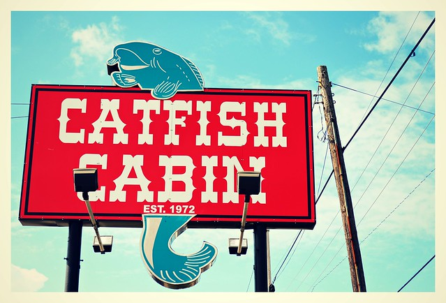 The Place to Find Catfish