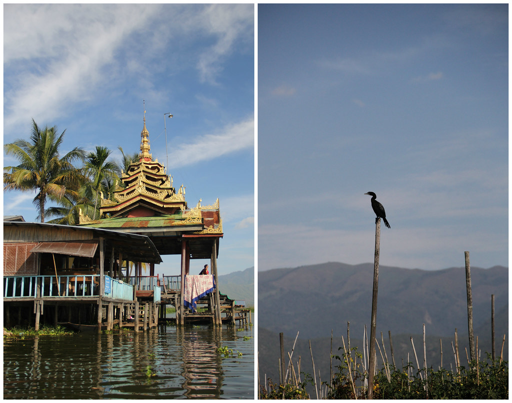 Jumping Cat Monastery, Inle Lake