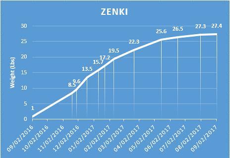 ZenkiWeight