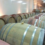 Wine Event