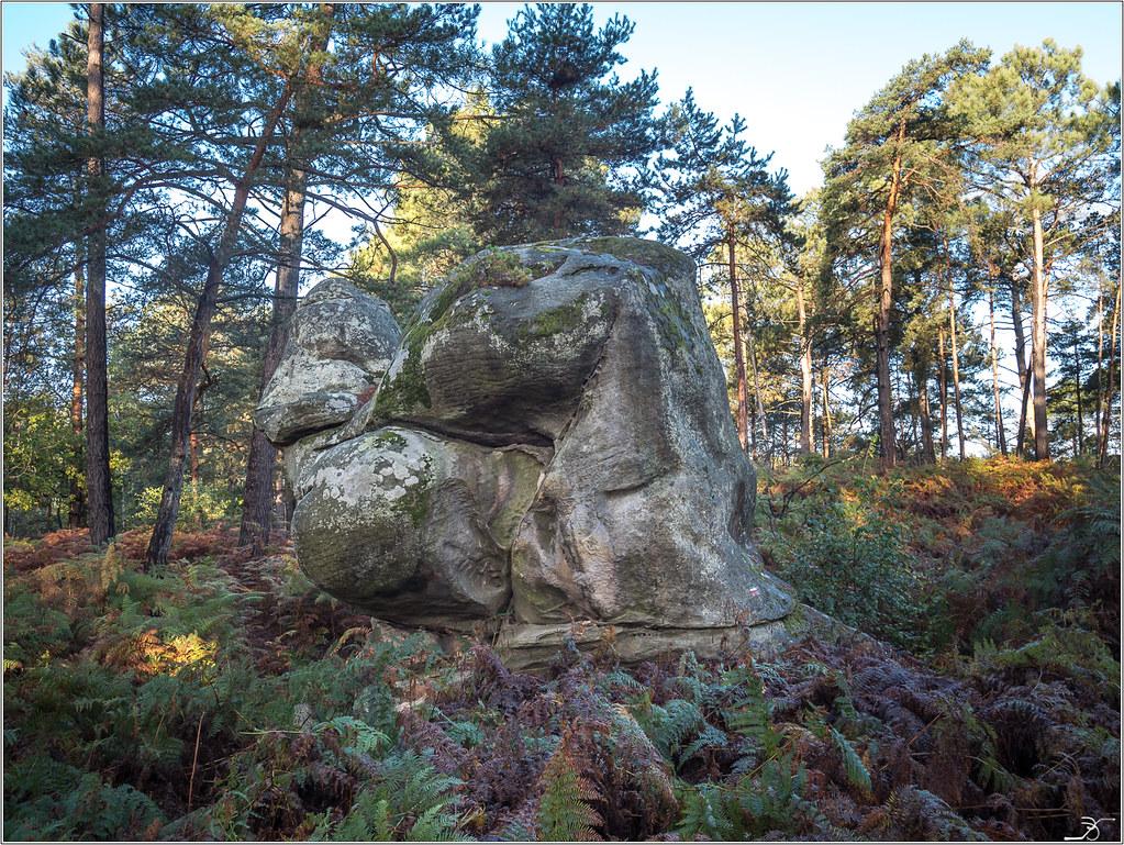 Les rochers de Nemours 23663098388_eecc5f52f8_b