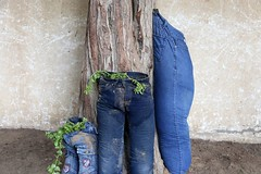 School students in Gaza reusing old jeans to grow some plants