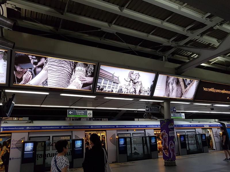 King Rama IX - ในหลวงของเรา - สถานีสยาม6