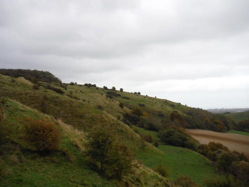 North Downs along Tolsford Hill