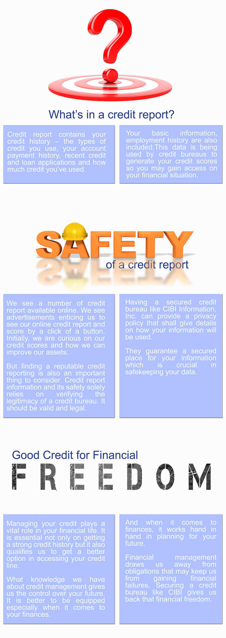 CREDIT REPORT INFORMATION AND ITS SAFETY copy